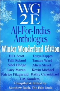 wg2e All For Indies Anthologies: Winter Wonderland Edition